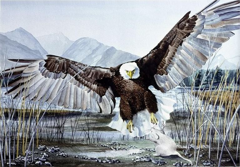 mouse flipping off eagle
